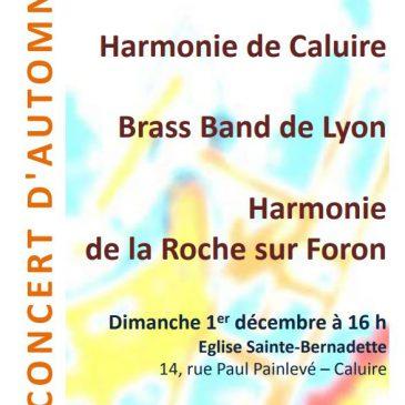 Concert d'automne le 1er décembre 2013 à 16h, Eglise Ste Bernadette, Caluire